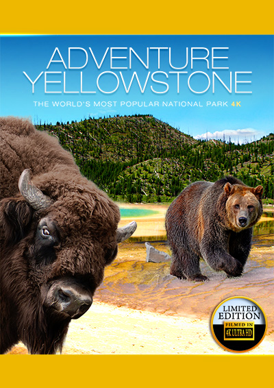 AdventureYellowstone4K big